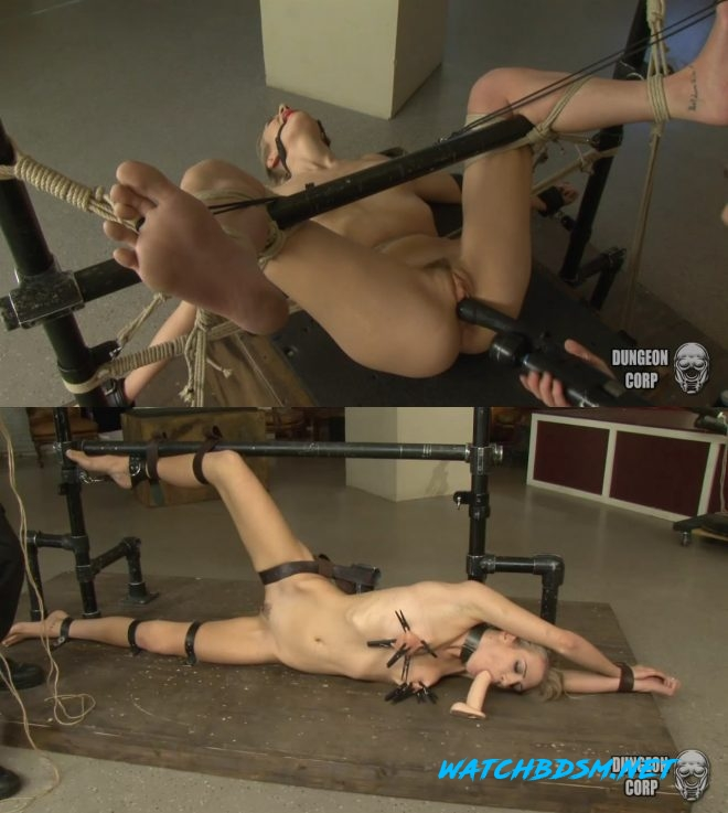 Amanda Tate - Hot and Kinky gets Controlled - HD - Dungeon Corp
