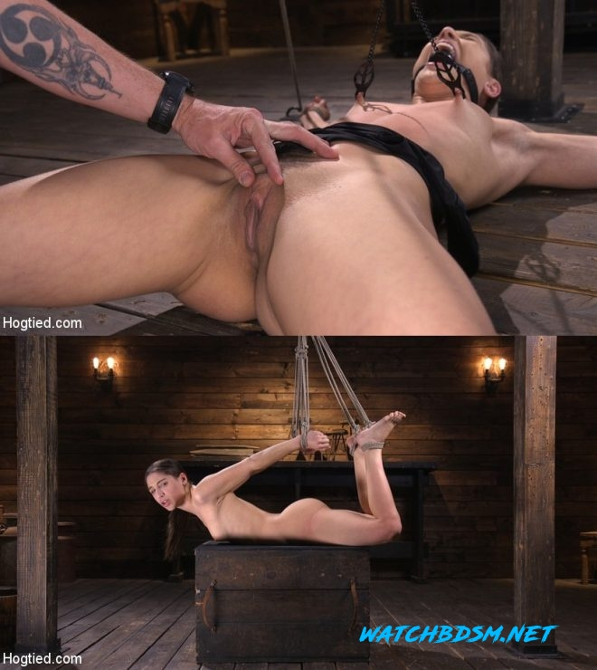 Abella Danger - Pain Slut Abella Danger Suffers in Grueling Predicament Bondage - HD - HOGTIED