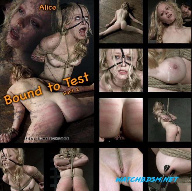 Alice - Bound to Test 2, The reddening of Alice's skin begins. - HD - REAL TIME BONDAGE