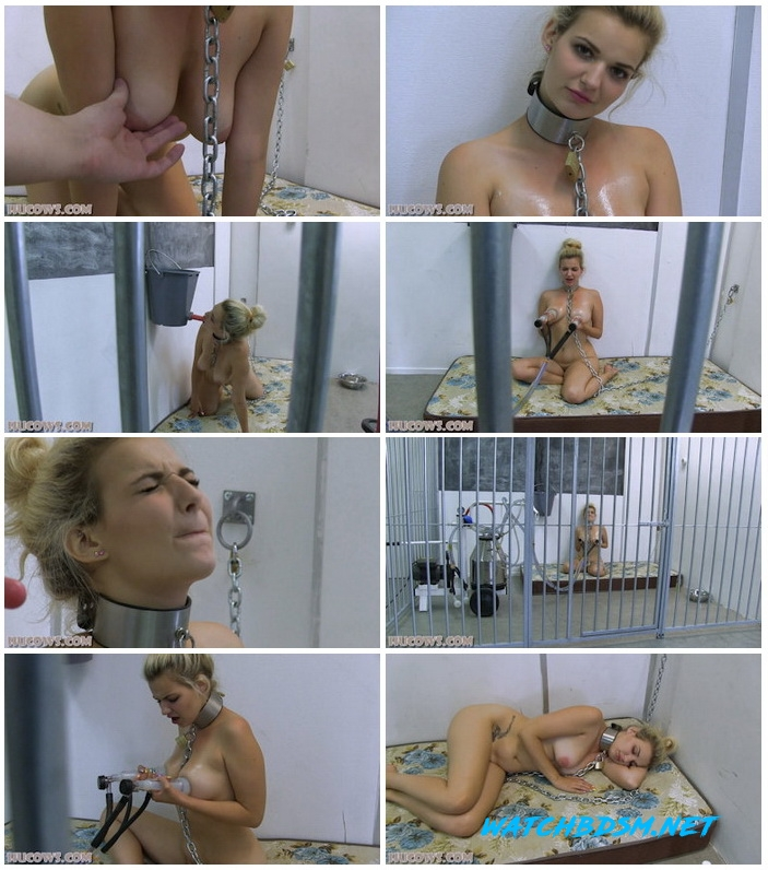 Dolly - Caged HuCow - FullHD - Hucows