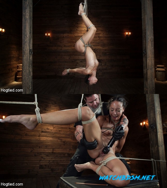 Alexis Tae - First Time Being tormented in Grueling Bondage - HD - HOGTIED