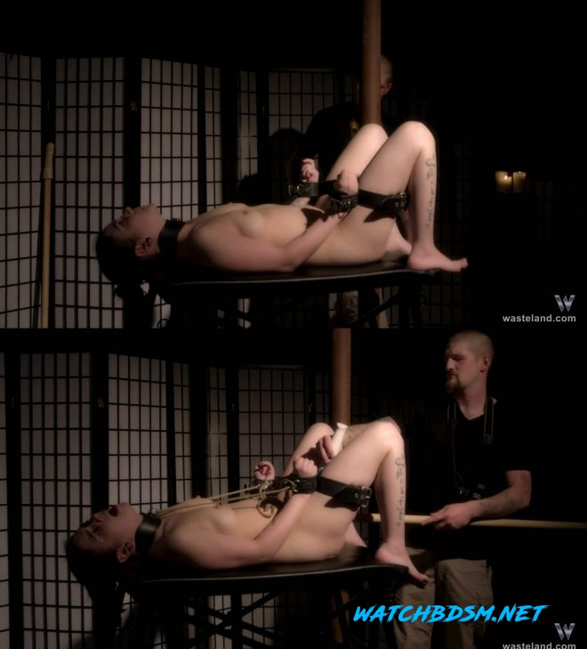 Cat Belmont Collared by a Kinky Photographer - FullHD - Wasteland