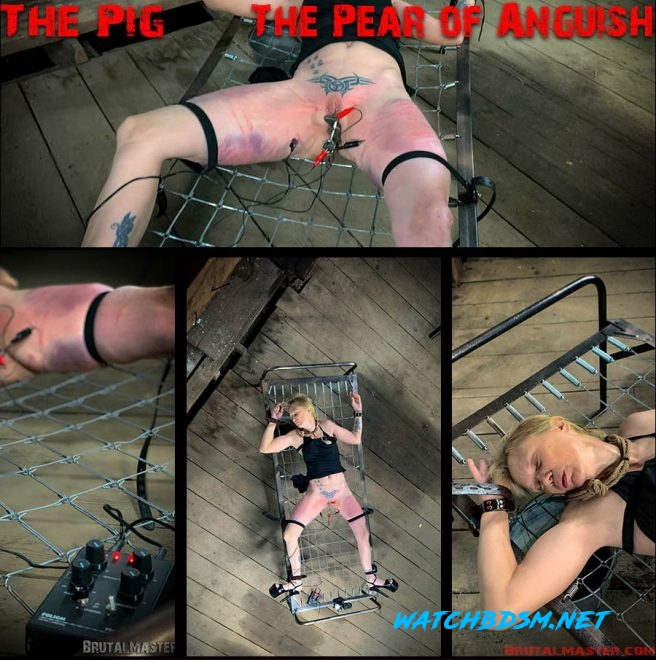 The Pig – The Pear Of Anguish - FullHD - Brutal Master
