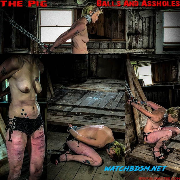 The Pig – Balls And Assholes - FullHD - BrutalMaster