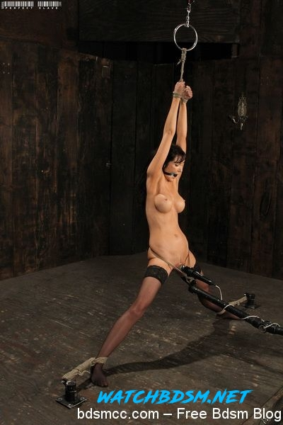 Diana Prince - A Standing Struggle - HD - Perfect Slave