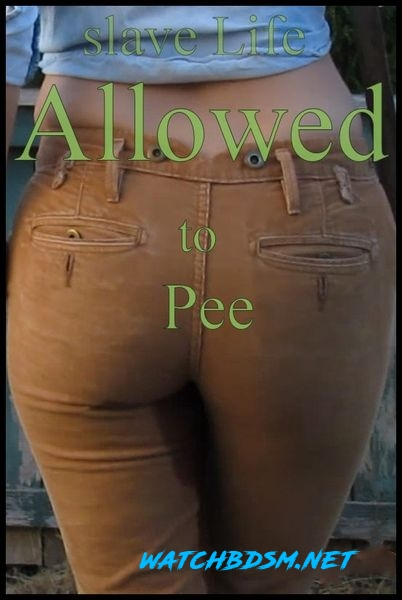Abigail Dupree - Slave Life – Allowed to Pee - HD