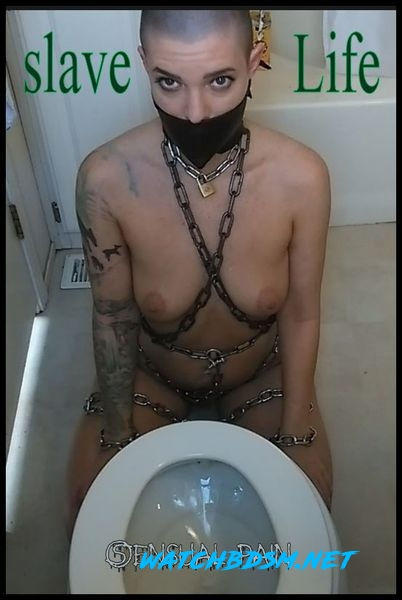 slave Life – Cleaning the Toilet - HD