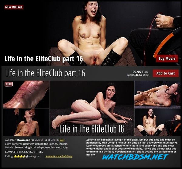 Life in the Elite Pain Club 16 - HD
