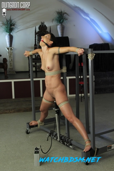 Wenona - Every Master Needs One – - HD - Society SM