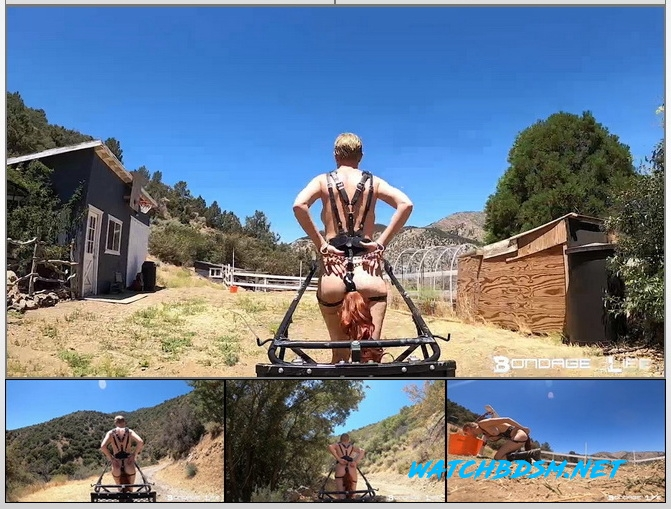 Rachel Greyhound - Pony Cart Ride - HD - Bondage Life