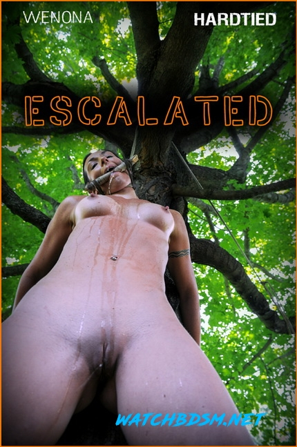 Wenona - Escalated | - HD - Hardtied