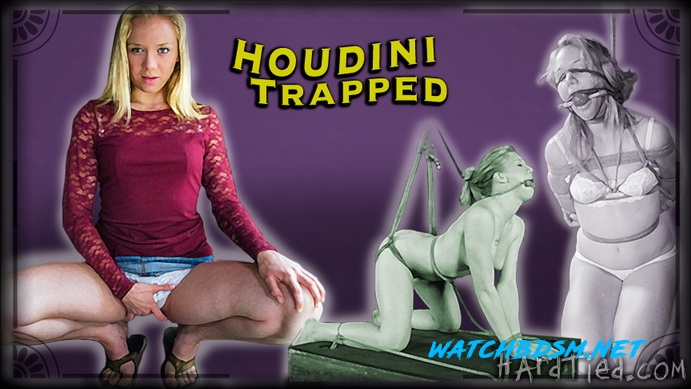 Tracey Sweet - Houdini Trapped - HD - Hardtied